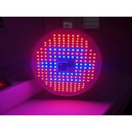 BASIC LED GROW žiarovka na všetky rastliny s ovládačom na stmievanie a načasovanie, ružovo-modrá, 12W, E27, SMD 3528