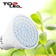 BASIC LED GROW žiarovka na všetky rastliny, 3W, GU10, SMD 5730, fialová