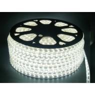 LED pás SMD5050 60LED/m IP68,230V , 1m-studená biela