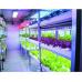 Kompletná sada LED pásik pre rast rastlín, 5m, 300xled, SMD 5050, 14,4W/m, IP65, vodotesný