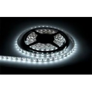 LED pásik SMD 3528 1m 60 led/m 4,8W/m studená biela, vodotesný pás